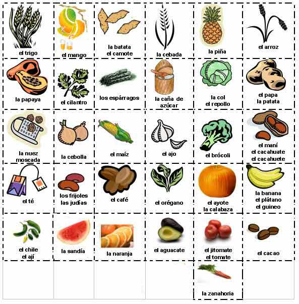 Dibujos de hortalizas y verduras - Imagui